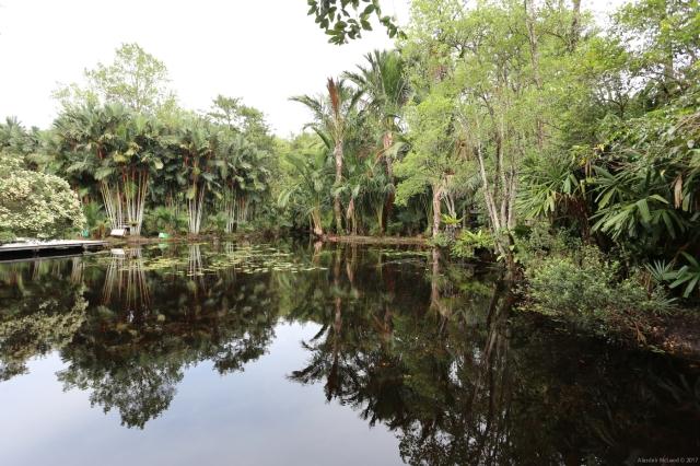 Tropical Peat Swamp Sungai Kolok